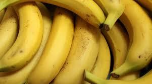 Учёные заявили об угрозе исчезновения бананов из-за грибка-убийцы