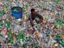 Мужчина обыскал 3 тонны мусора ради билетов на концерт любимого исполнителя