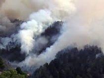«Огонь пожирает все насвоем пути»: природные пожары бушуют наострове Гран-Канария