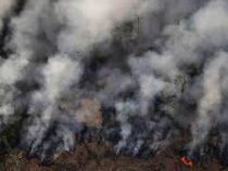 ВБразилии пожары добрались доодного изстадионов
