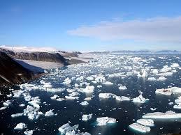 ВАрктике нашли пять новых островов