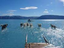 Свыше 10 млрд тонн льда растаяло за сутки в Грендандии