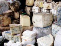 Опасные сорта сыра назвали врачи