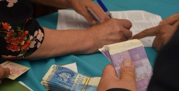 Больше всего микрокредитов в этом году выдано в Ошской области
