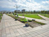 Мэрия Бишкека запускает «зеленую» акцию «Парк для жизни»