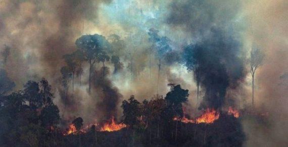 Бразилия отказалась от денег «Большой семёрки» на тушение лесных пожаров
