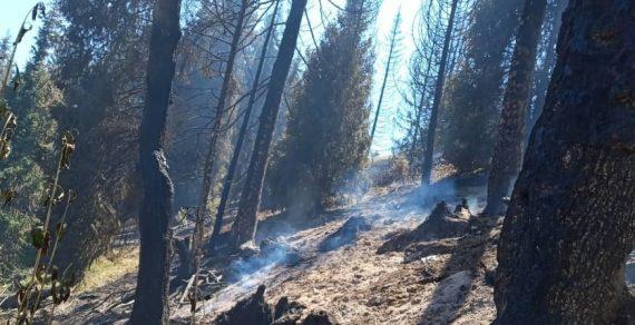 В горах Иссык-Куля продолжают тушить пожар