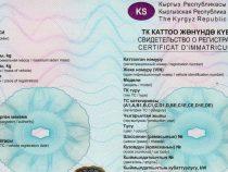 Водители, получившие временные техпаспорта, обязаны заменить их до 1 октября
