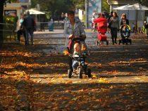 Первый день осени в Бишкеке будет теплым и очень комфортным