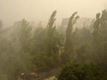 Синоптики предупреждают об усилении ветра в Бишкеке