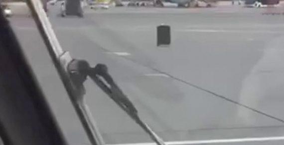 В Шереметьево чемодан совершил «побег» прямо по лётному полю