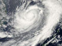 Ураган «Дориан» вынес на берег Флориды килограммы кокаина