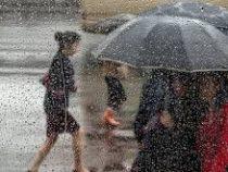 С начала месяца в Бишкеке выпало уже более 21 мм осадков