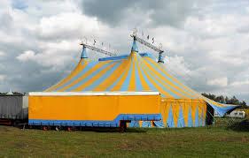 Эд Ширан решил провести свадебную церемонию в цирковом шатре