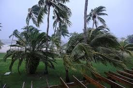 Из-за урагана «Дориан» в  США, ввели режим ЧСсразу вчетырех штатах