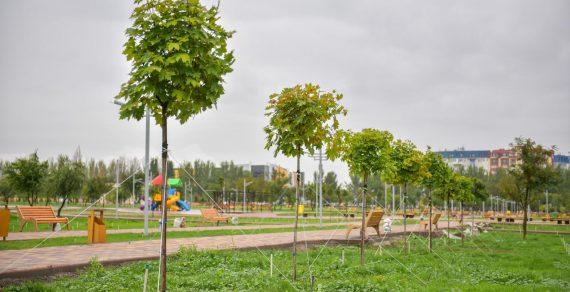 Бишкекчане поддержали зеленую акцию мэрии «Парк для жизни»