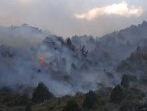 Милиция расследует причины пожара в Ала-Арчинском ущелье
