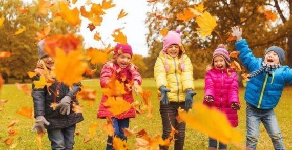 Школьники осенью будут отдыхать восемь дней