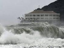 В Японии 60 человек пострадали из-за тайфуна «Факсай»