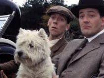 В Англии русская семья начала поиск дворецкого — фаната «Дживса и Вустера»