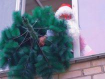 """В Запорожье """"сдался"""" еще один человек, выбросив новогоднюю ёлку"""