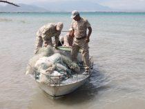 На Иссык-Куле выловили более ста рыболовных сетей