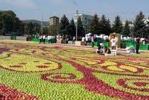 Панно из 40 тонн яблок собрали в Нальчике