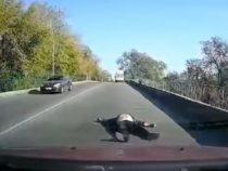 В Украине из скорой помощи на ходу выпал пациент