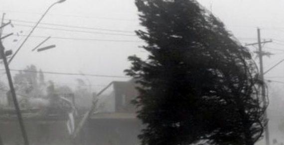 В Бишкеке и Чуйской области сегодня ожидается сильный ветер