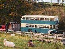 Англичанин нашел отличное применение старому автобусу