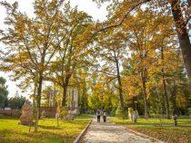 До конца второй декады ноября в Бишкеке осадков и сильных морозов не ожидается