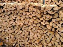 В Бишкеке нуждающиеся семьи получат бесплатные дрова