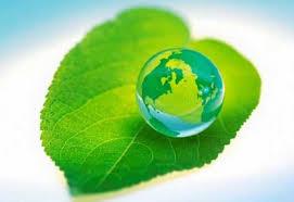 В Кыргызстане стартовала Неделя зеленой экономики