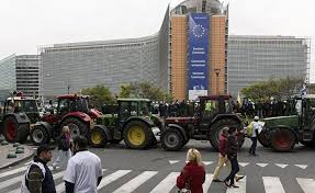 Европейские фермеры выходят набольшую дорогу взнак протеста