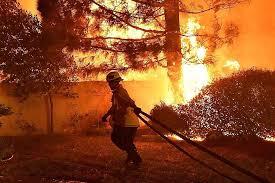 Студию Warner Brothers эвакуировали из-за пожаров в Калифорнии