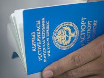 По факту незаконной выдачи паспортов возбуждено 36 уголовных дел