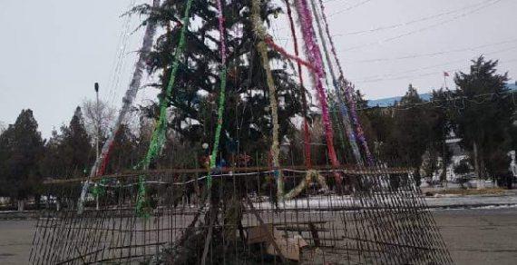 Базар-Коргон удивил соцсети «дорогой» елкой