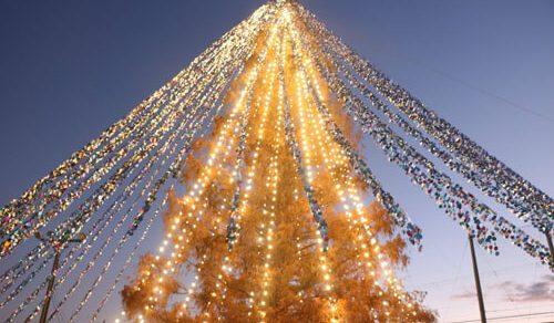 Необычная рождественская ёлка попала в Книгу рекордов Гиннеса
