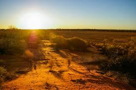 В Австралии зафиксировали исторический температурный максимум