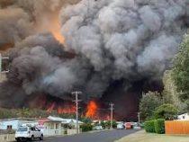 ВАвстралии лесные пожары практически полностью уничтожили город недалеко отСиднея