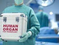 В России у умерших граждан собираются забирать органы для пересадки
