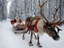 Санта-Клаус раздал 7,5 млрд подарков и вернулся на Северный полюс