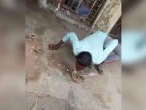 Индиец полез целоваться с коброй и был укушен в губы
