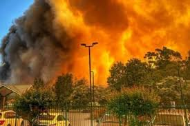 Втуристическом районе Австралии прошла массовая эвакуация из-за сильнейших лесных пожаров
