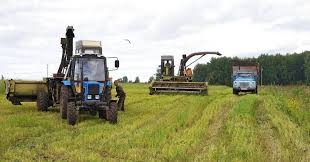 Проект «Финансирование сельского хозяйства» поддержал почти 10 тысяч фермеров