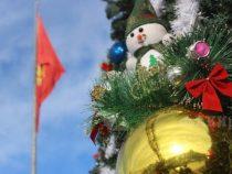 Мэрия Бишкека объявила конкурс на лучшее новогоднее оформление