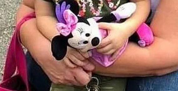 Плюшевый шпионаж: В США девушка следила за бывшим мужем с помощью игрушки