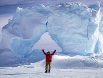 Австралийский антарктический отдел объявил интересную вакансию