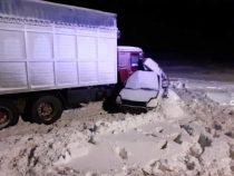 В аварии на трассе Челябинск – Троицк погибли пять человек