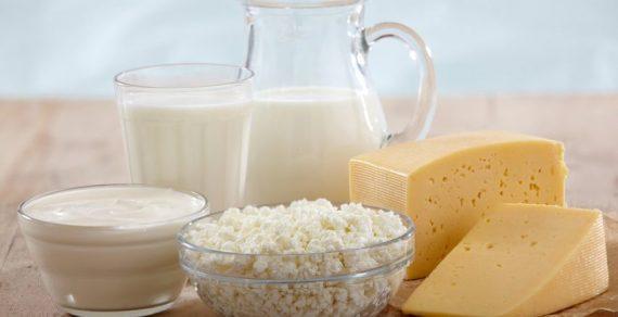 13 предприятий будут экспортировать сухое молоко и сыр в Китай